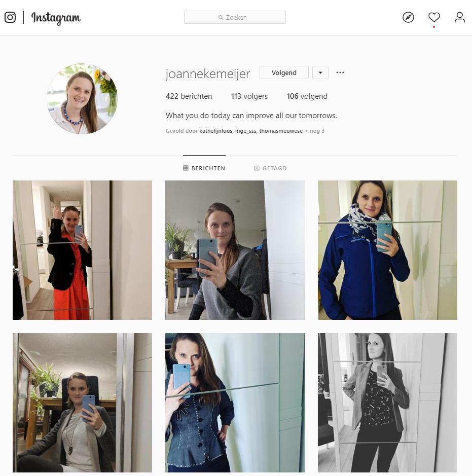 Overzicht instagram profiel @joannekemeijer